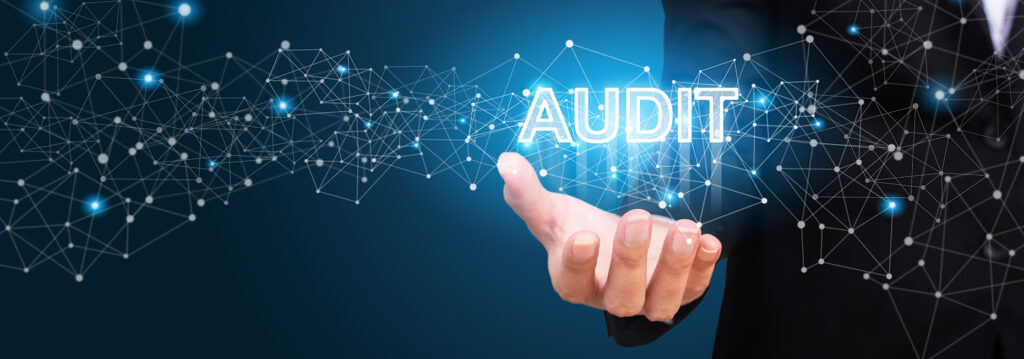 ISO Remote Auditee Responsibilities