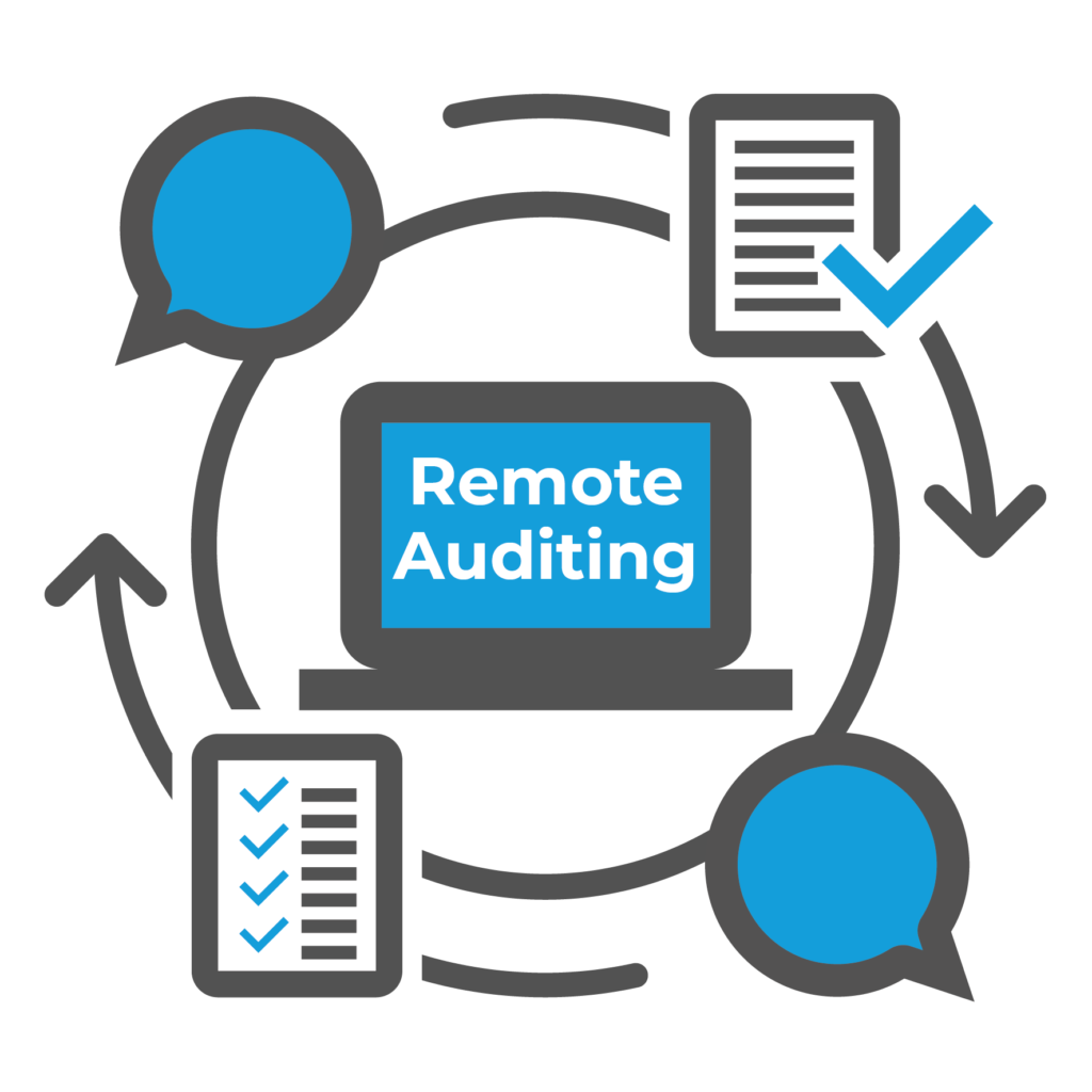 Pros and Principles for Remote Auditing